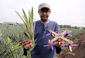 ابتکار یک جوان در ساخت پهپاد با برگهای دورریز آناناس+عکس