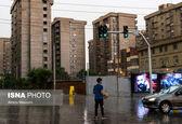 با ۸۰۰ میلیون خانه چند متری در تهران بخریم؟