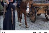 سلفی جالب رزیتا غفاری با اسب +عکس