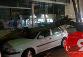 سقوط درخت روی ماشین گلف در تهران +عکس